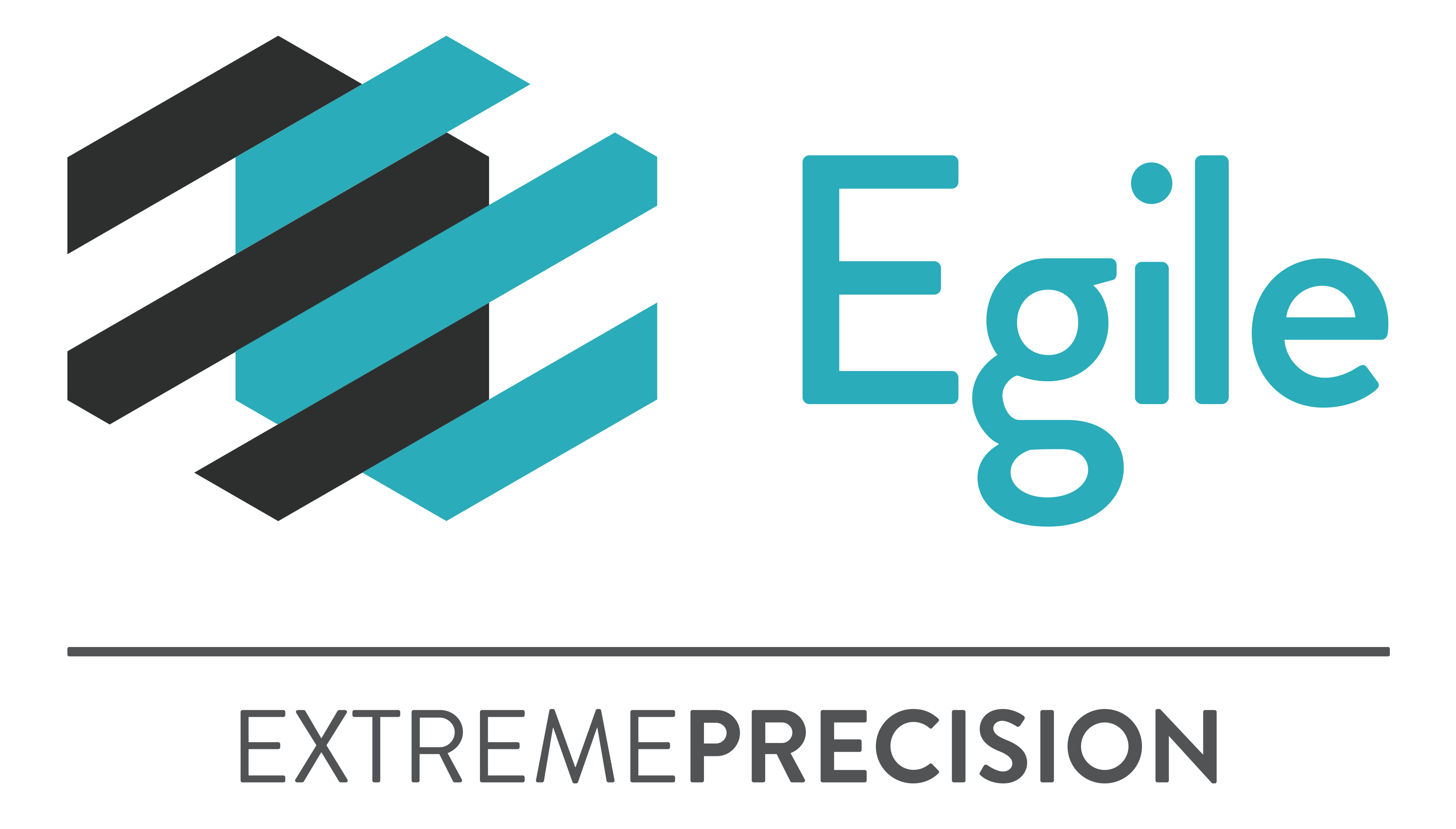 logo Egile Extremeprecision H Color